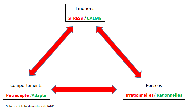 stress-ANC
